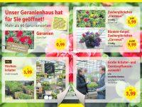 Tage der offenen Gärtnerei 2019